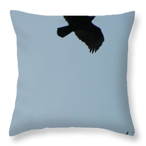 Bird Throw Pillow featuring the photograph Flight In A Winter Sky by George Pedro