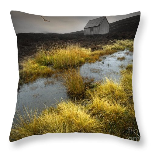 Scotland Throw Pillow featuring the photograph Flight Into Beauty by Edmund Nagele