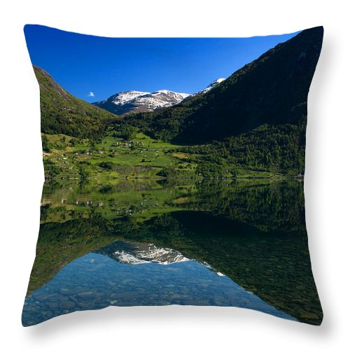 Country Throw Pillow featuring the photograph Flo Norway by Benjamin Reed