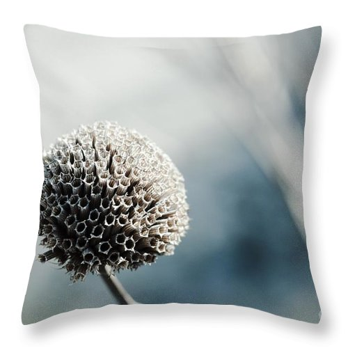 Flower Throw Pillow featuring the photograph Flora by Photolope Images