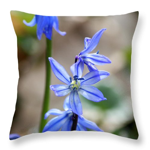 Blue Flower Throw Pillow featuring the photograph Floral Ladder by Neal Eslinger