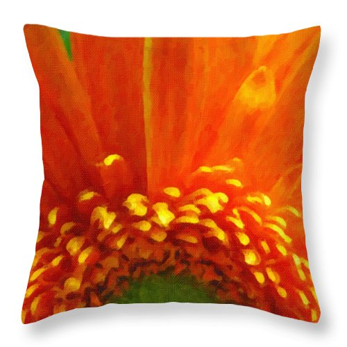 Floral Throw Pillow featuring the photograph Floral Sunrise - Digital Painting Effect by Rhonda Barrett