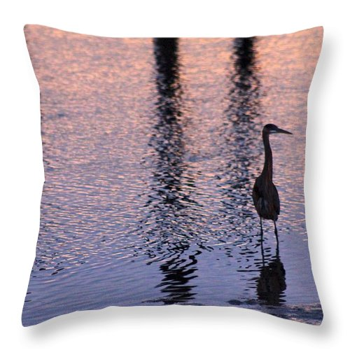 Florence Throw Pillow featuring the photograph Florence Sunset by Aaris K