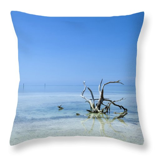 America Throw Pillow featuring the photograph Florida Keys Lonely Root by Melanie Viola