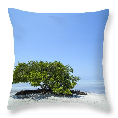 America Throw Pillow featuring the photograph Florida Keys Lonely Tree by Melanie Viola