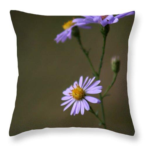 Flower Throw Pillow featuring the photograph Flower 1 by Allan Lovell