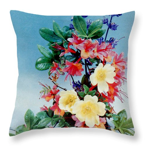 Flower Throw Pillow featuring the photograph Flower Arrangement 1 by Ted Denyer