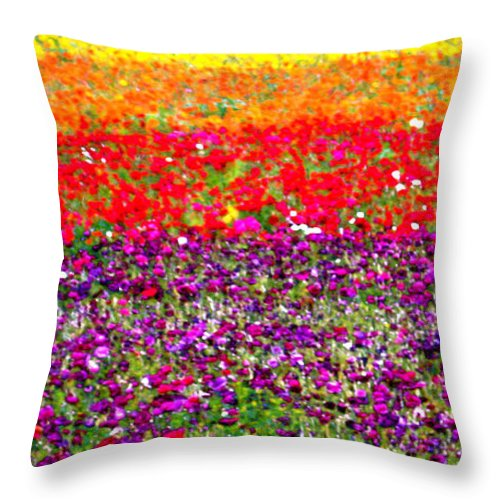 Flower Throw Pillow featuring the photograph Flower Fields by Jerome Stumphauzer
