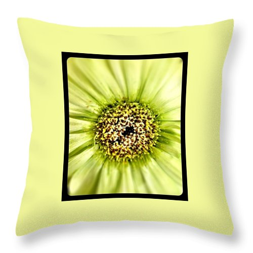 Flower Throw Pillow featuring the photograph Flower Green by Michele Monk