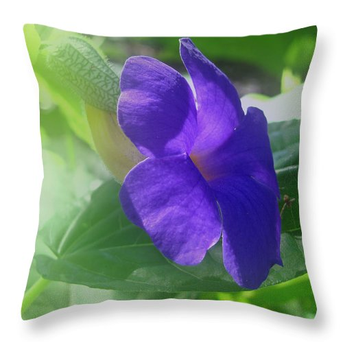 Penne Throw Pillow featuring the photograph Flower No. 2 by Phil Penne