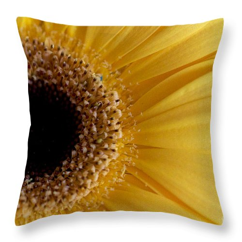 Flower Throw Pillow featuring the photograph Flower Power All Profits Go To Hospice Of The Calumet Area by Joanne Markiewicz