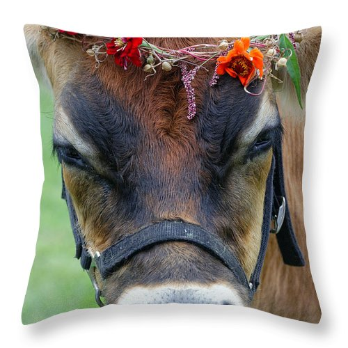 Agriculture Throw Pillow featuring the photograph Flower Power by John Greim