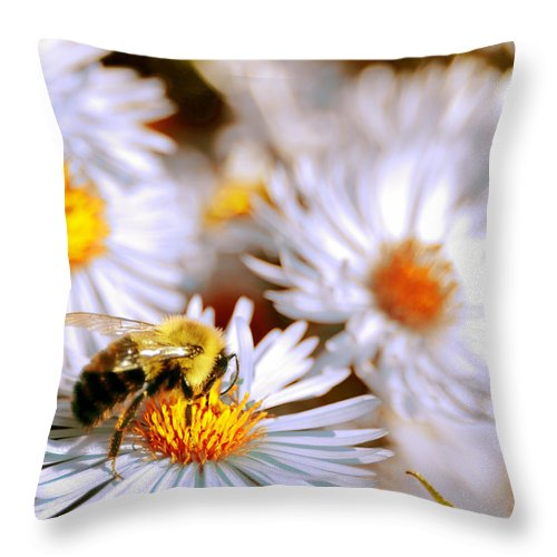 Bee Throw Pillow featuring the photograph Flowering Bee by Optical Playground By MP Ray