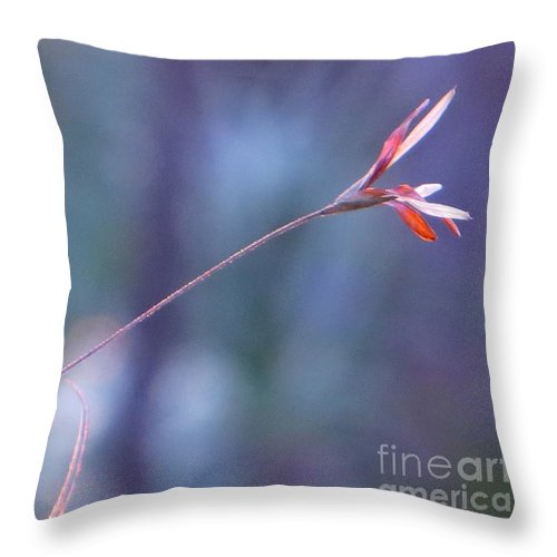 Flowering Moss Throw Pillow featuring the photograph Flowering Moss by Joy Hardee