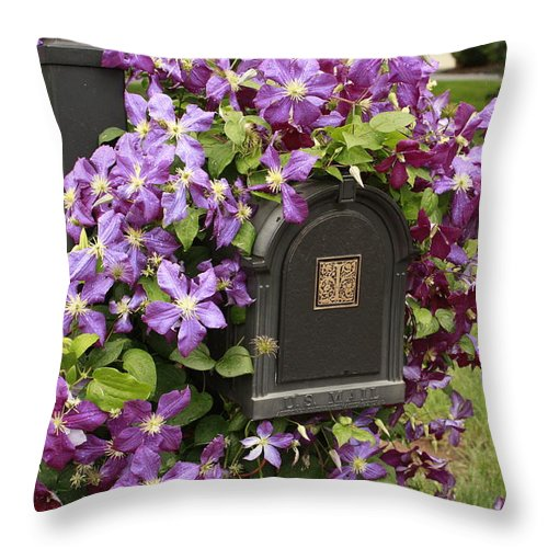 Flowering Vine Throw Pillow featuring the photograph Flowering Vine by Ann Murphy