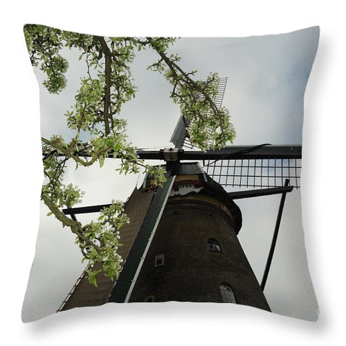 Photograph Throw Pillow featuring the photograph Flowers And Wind by Richard Gehlbach