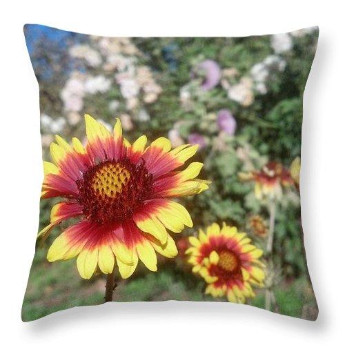Riley's Farm Throw Pillow featuring the photograph Flowers At The Farm by Steve Scheunemann