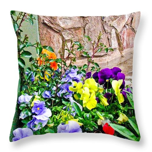 Flowers Throw Pillow featuring the photograph Flowers By The Wall by Steve Purifoy