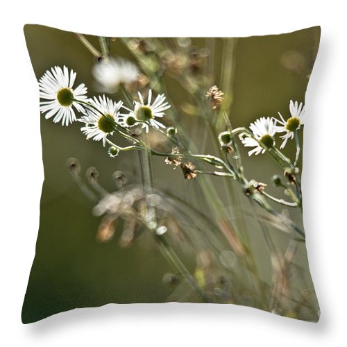 Nature Throw Pillow featuring the photograph Flowers End by Cheryl Baxter