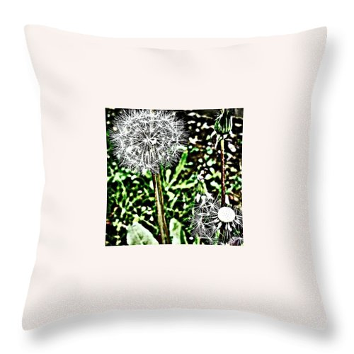Beautiful Throw Pillow featuring the photograph Dandelions by J Roustie