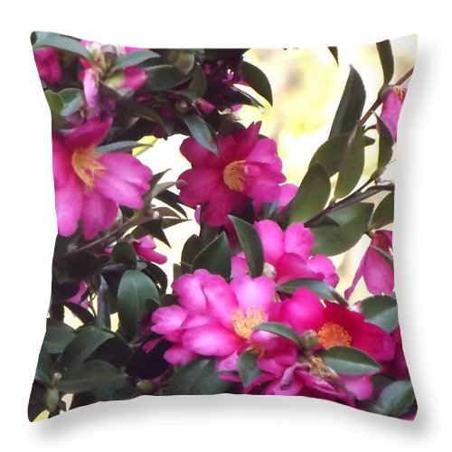 Flowers In Bloom Throw Pillow featuring the photograph Flowers In Bloom by Linda Aiassa