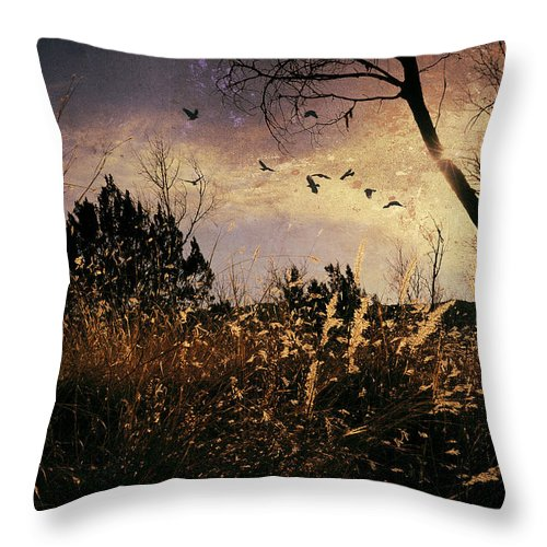 Flushed Throw Pillow featuring the photograph Flushed by Karen Slagle