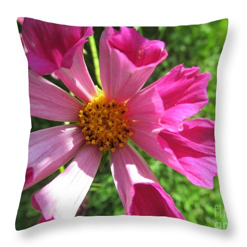 Flowers Throw Pillow featuring the photograph Fluted Petals by Tina M Wenger
