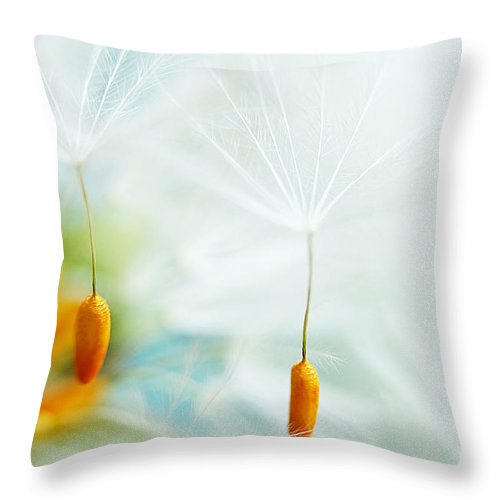 Dandelion Throw Pillow featuring the photograph Fly Away by Onelia PGPhotography