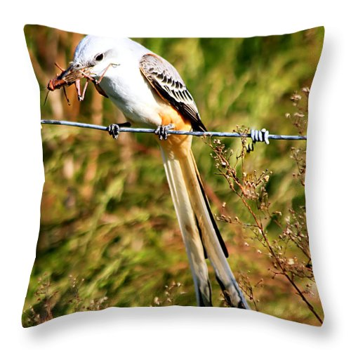 Wildlife Throw Pillow featuring the photograph Flycatcher With A Meal by Ira Runyan