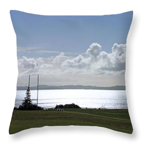 Macleans Park Throw Pillow featuring the photograph Flying At Macleans Park by Gee Lyon
