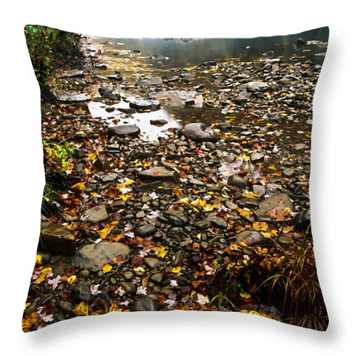 Williams River Throw Pillow featuring the photograph Fog And Fall Color Williams River by Thomas R Fletcher