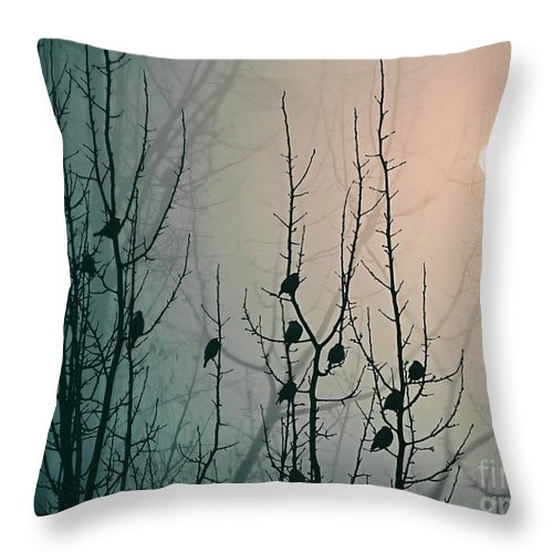 Fog Throw Pillow featuring the photograph Fog by Elena Lir-Rachkovskaya