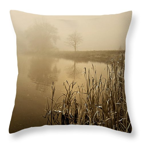 Fog Throw Pillow featuring the photograph Foggy Day At Silver Lake by Judy Johnson