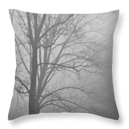 Park Throw Pillow featuring the photograph Foggy Days by Trish Tritz