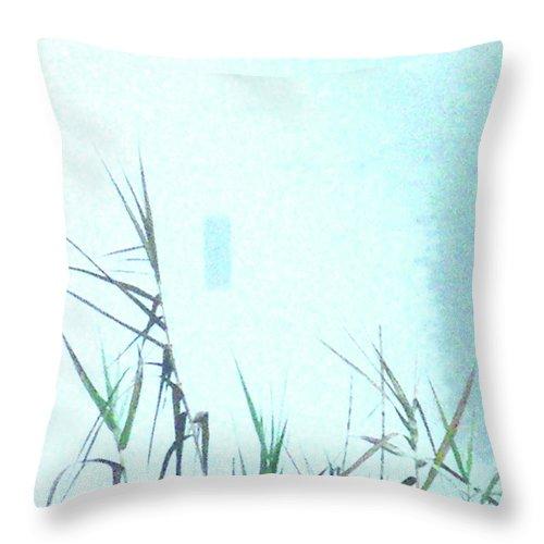 Marsh Throw Pillow featuring the photograph Foggy Marsh Mornng by Lizi Beard-Ward