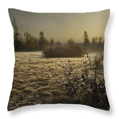 Fog Throw Pillow featuring the photograph Foggy Meadow by Scott Moss