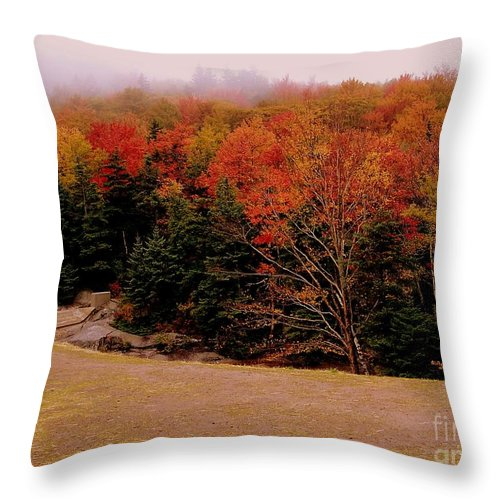 Foggy Throw Pillow featuring the photograph Foggy Mountain Landscape by Eunice Miller