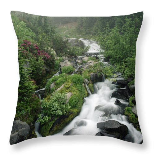 Stream Throw Pillow featuring the photograph Foggy Spring Stream by Glen Wilkerson