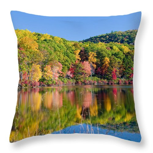 Lake Throw Pillow featuring the photograph Foilage In The Fall by Anthony Sacco