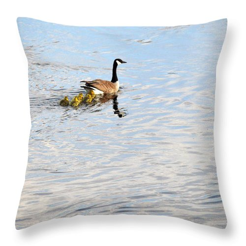 Ludington Throw Pillow featuring the photograph Follow The Leader by Linda Kerkau