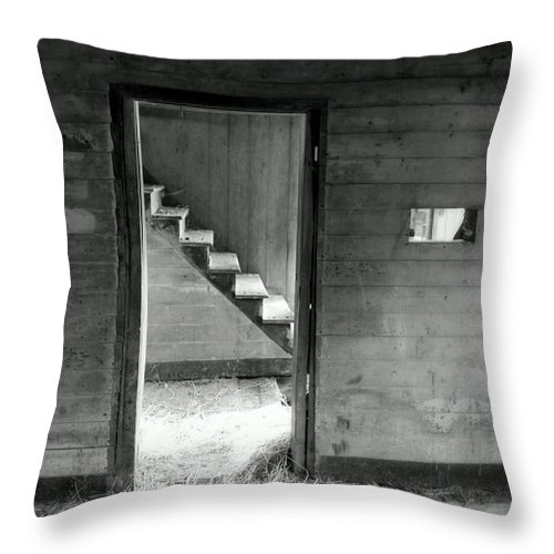 Black And White Throw Pillow featuring the photograph Follow The Light by Karen Wiles