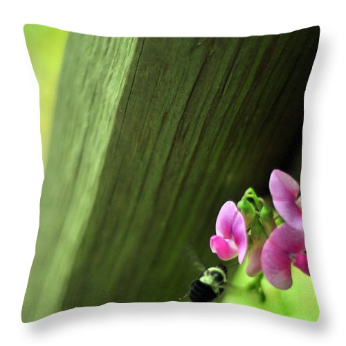 Lathyrus Odoratus Throw Pillow featuring the photograph Follow Your Bliss by Rebecca Sherman