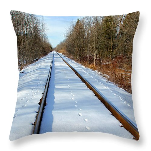 Guelph Throw Pillow featuring the photograph Follow Your Own Path by Debbie Oppermann