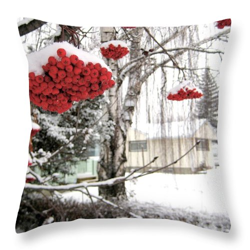 Seasons Throw Pillow featuring the photograph For The Birds by Shirley Sirois