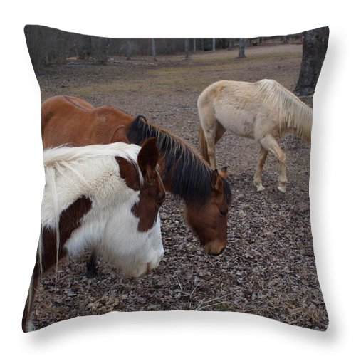 Western Throw Pillow featuring the photograph Foraging Horses by John Wall
