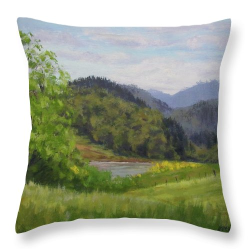 Pond Throw Pillow featuring the painting Ford's Pond in Spring by Karen Ilari