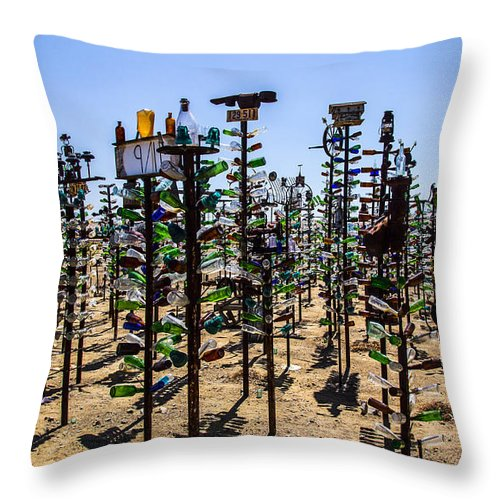 Bottleneck Ranch Throw Pillow featuring the photograph Forest by Angus Hooper Iii