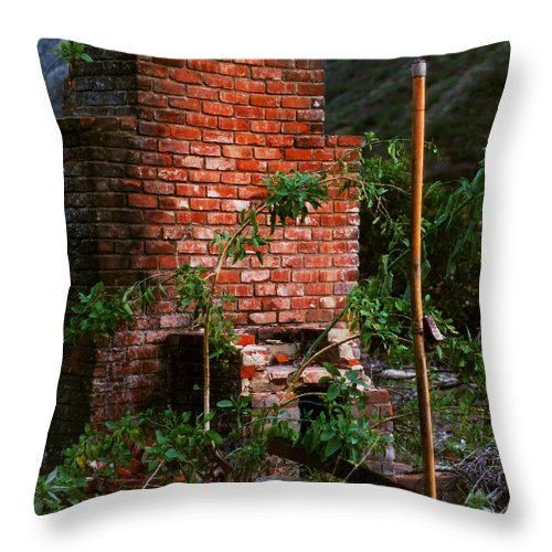 Overgrown Throw Pillow featuring the photograph Forest Chimney by William Mott