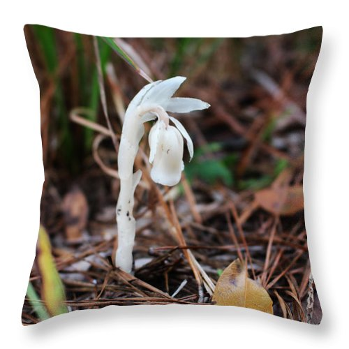 Indian Pipe Throw Pillow featuring the photograph Forest Fairy Indian Pipe by Brandy Nicole Neal Stenstrom