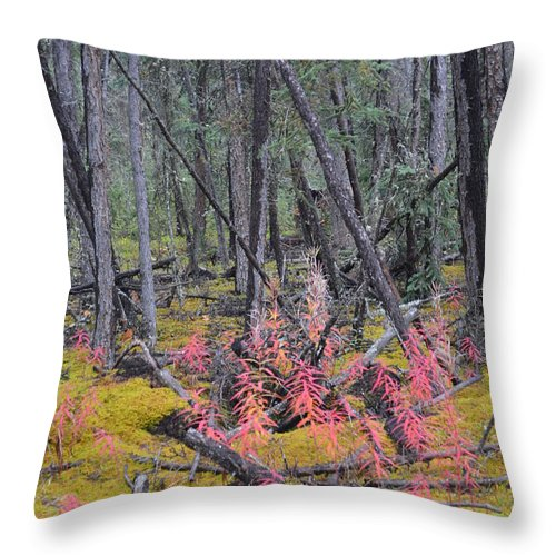 Forest Throw Pillow featuring the photograph Forest Fire by Brian Boyle